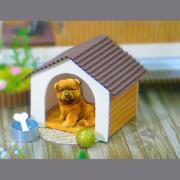 寵物(含小窩.玩具)